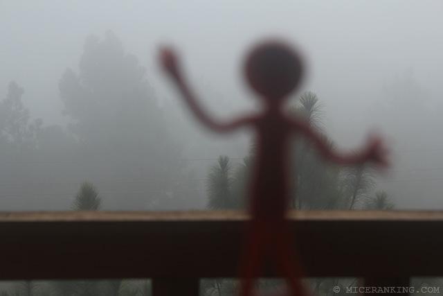 Stickman Meri Phuensom Resort fog