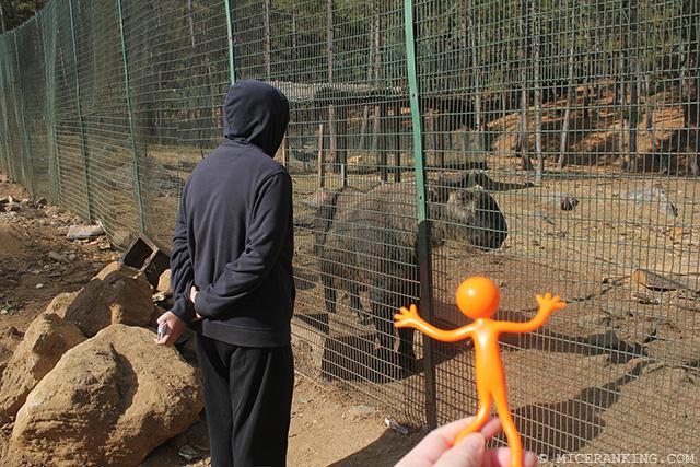Stickman Zoo 8743